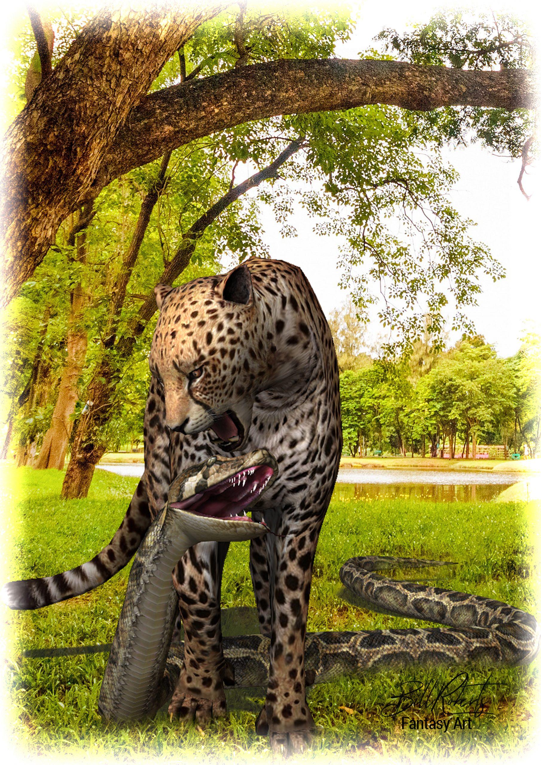 Cheetah & Python